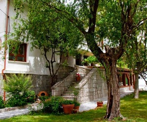 Casa - jardín