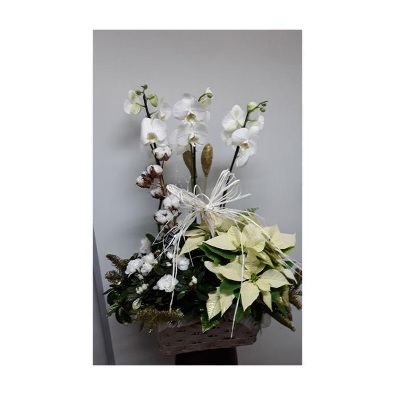 Arreglo de Navidad con orquídea, flor de pascua amarilla, azalea, flor de algodón, adornos navideños, pinsapo teñido en color dorado sobre una base de mimbre