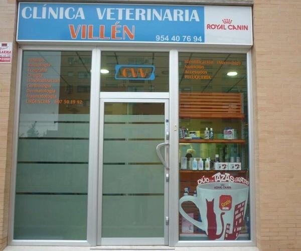 Clínicas veterinarias en Sevilla