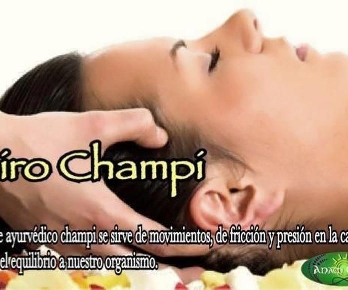 Shiro Champi: Terapias de Anam Cara
