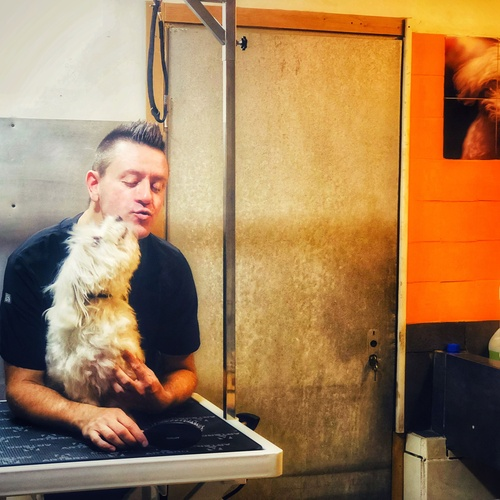 Peluquería canina en Eixample Barcelona