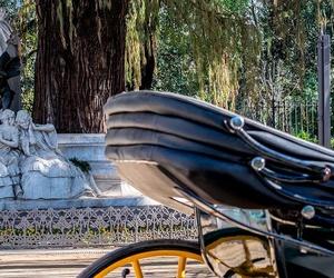 Paseos románticos en coche de caballos por Sevilla