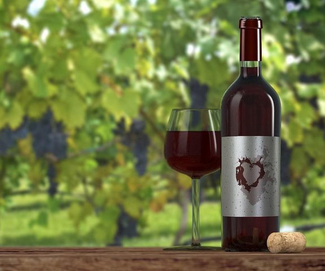 Maridaje con vino: aprende todo sobre él