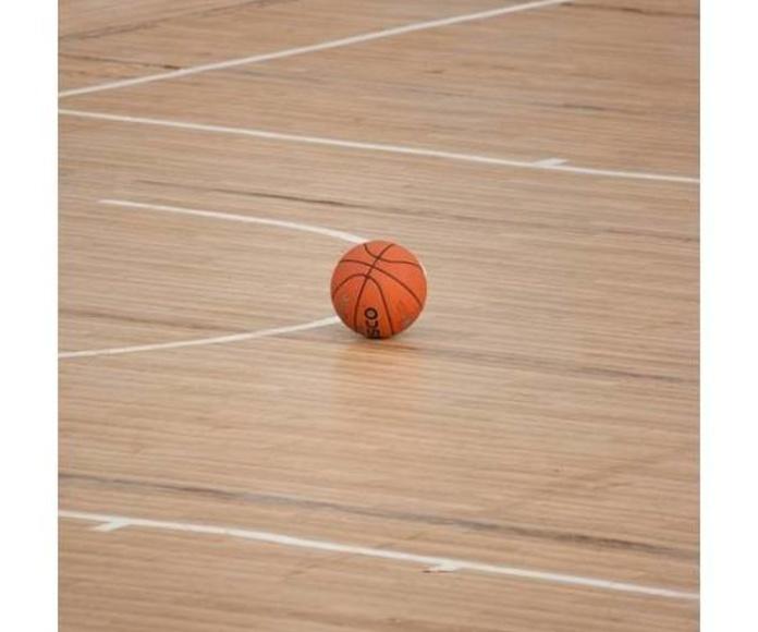 Limpieza de instalaciones deportivas: Servicios de Gerusia, S.L. Empresa de Servicios