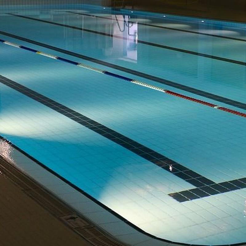 Instalaciones acuáticas: Servicios de Jardinería FG