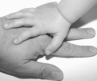 NUEVO PROCEDIMIENTO ESPECIAL Y SUMARIO EN MATERIA DE DERECHO DE FAMILIA POR LA CRISIS DEL COVID-19
