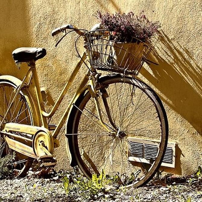 El origen de las bicicletas