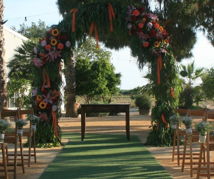 El Vincle (Elche): Bodas y fincas de Fincas para bodas