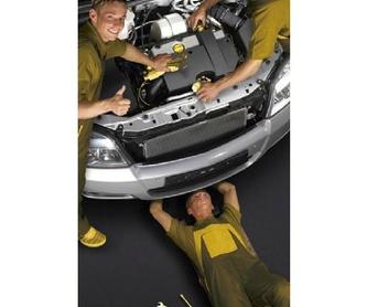 Neumáticos : Servicios de Talleres Alca Motor