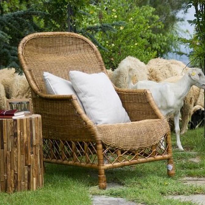 Cuál es la mejor madera para los muebles
