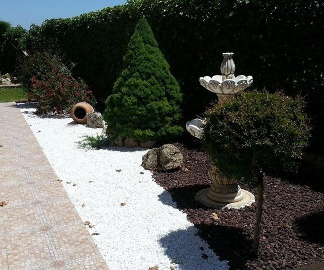 Consejos para plantar arbustos