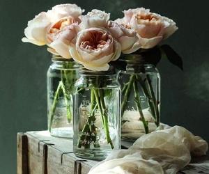 Las flores son efímeras pero no por ello menos bellas. ABH.