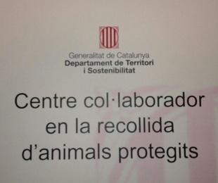 RECOGIDA DE ANIMALES PROTEGIDOS
