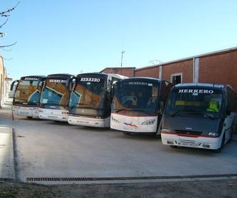 Transporte escolar: Servicios de Autocares Herrero