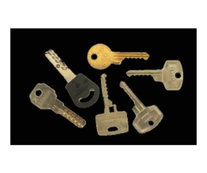 Prestamos servicios: Servicios de Cerrajero Locksmith Marbella