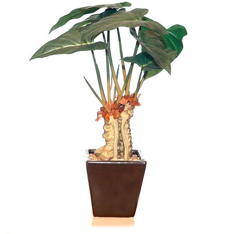 Plantas artificiales: Productos de FLORISTERÍA CASA BASUSTA