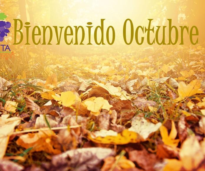 Bienvenido el mes de Octubre