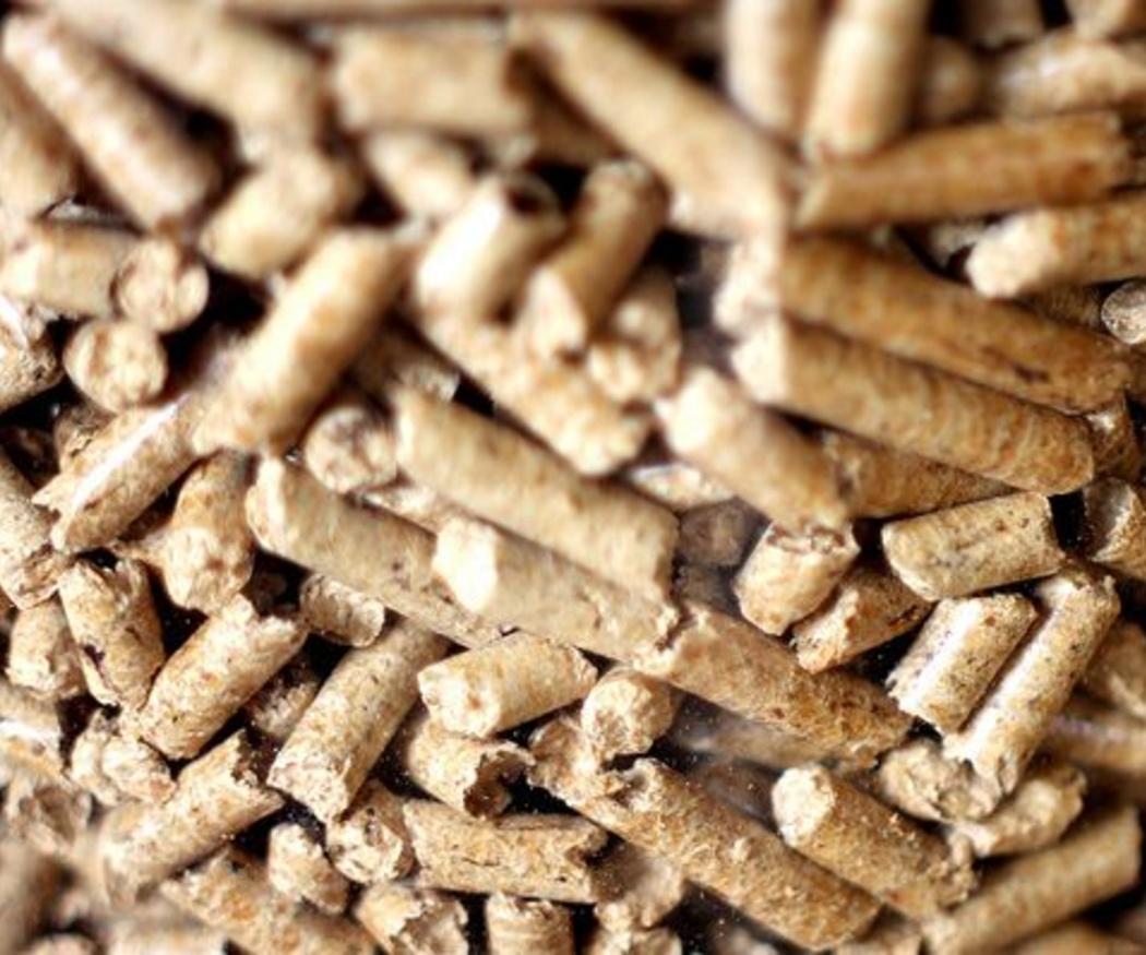 ¿Qué son los pellets? ¿Para qué sirven?