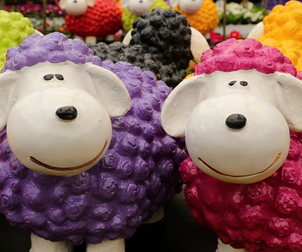 Venta en ferias de artículos con animales en Toledo