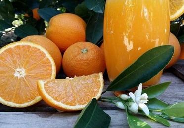 Naranjas zumo mediano 17 kg