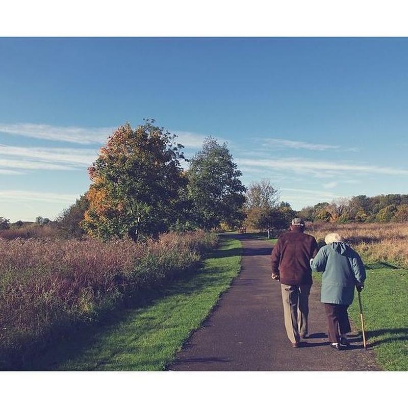 Planes de pensiones: Servicios de Información