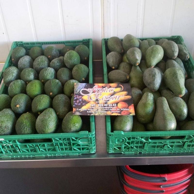 Nuestro producto estrella: el aguacate: Catálogo de Frutas Rosán