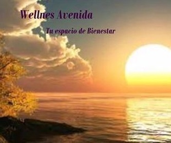 Pilates: Terapias de Wellnes Avenida