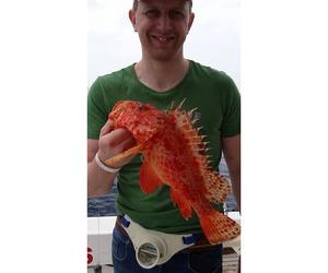 Pesca deportiva en Mogán