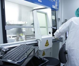 Radiologías y ecografías: Servicios de Bremen Veterinària