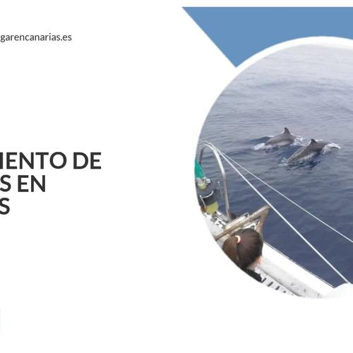 <p>Boat trips in Canarias | Catamarán Marhaba</p>
