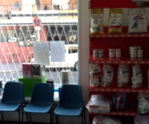 Veterinario en Usera Madrid