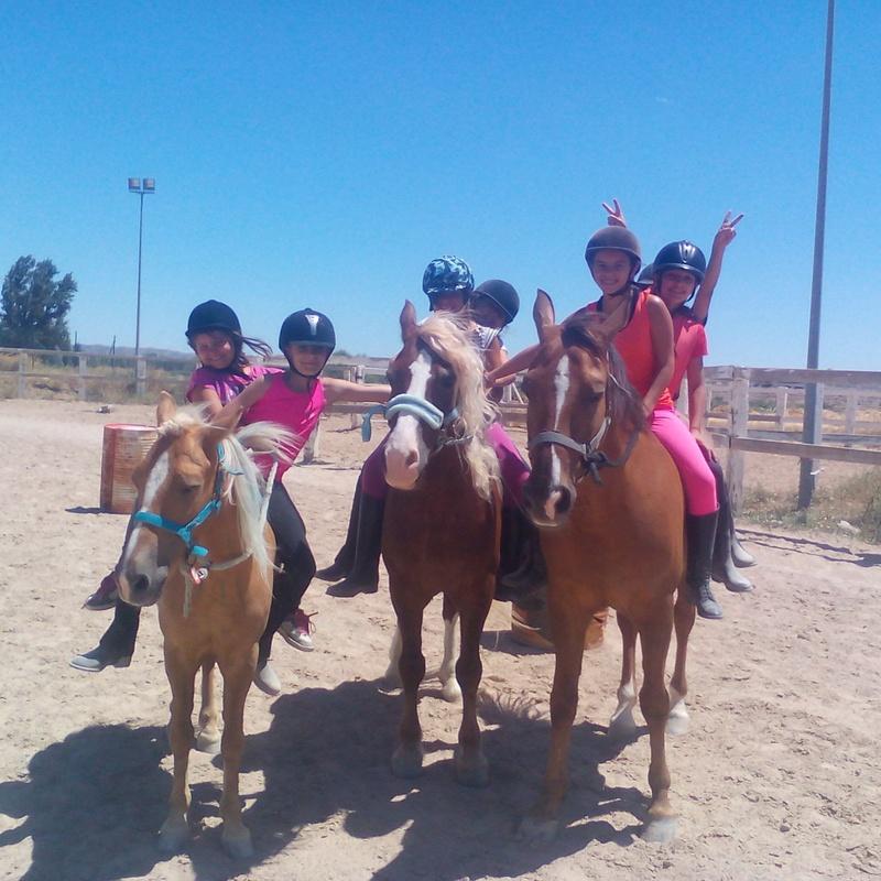 Actividades ecuestres para empresas y particulares: Servicios de Hípica Riding School