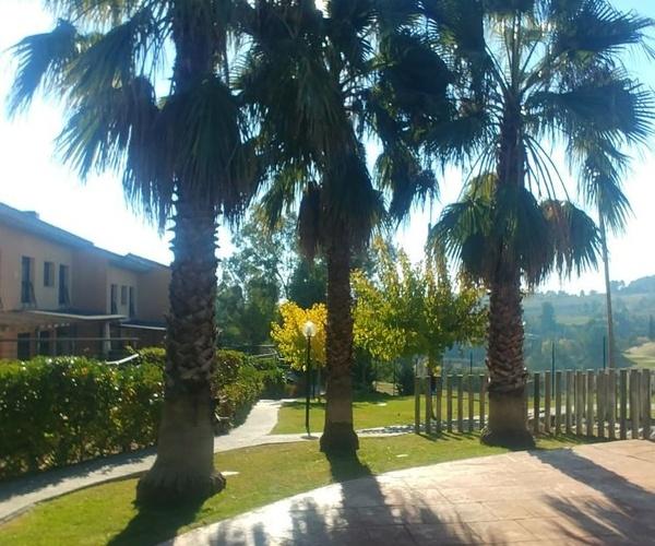 Diseño y mantenimiento de jardines en Masquefa | Jardinería Moreno