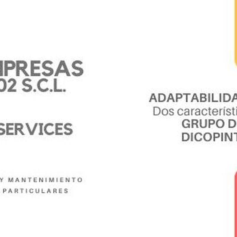 GRUPO DE EMPRESAS DEL GRUPO DICOPINT 2002 S.C.L.
