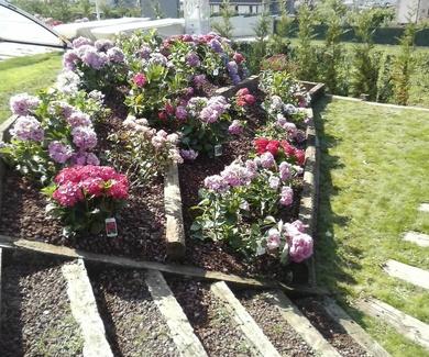 Presupuesto mantenimiento jardines Bizkaia
