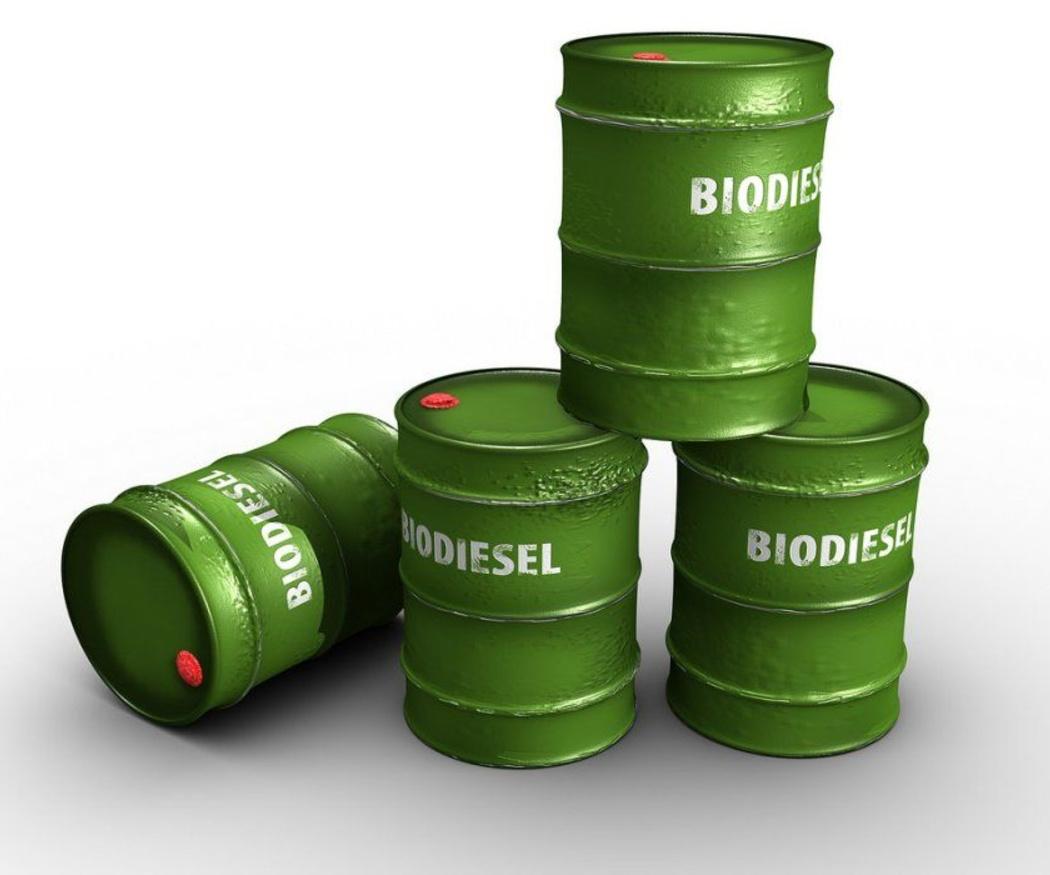 ¿Tiene futuro el biodiesel?