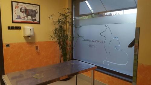 Fotos de Veterinarios en Utebo | Clínica Veterinaria Utebo