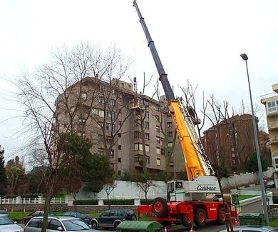 Podas controladas en lugares de difícil acceso en Santander-Cantabria