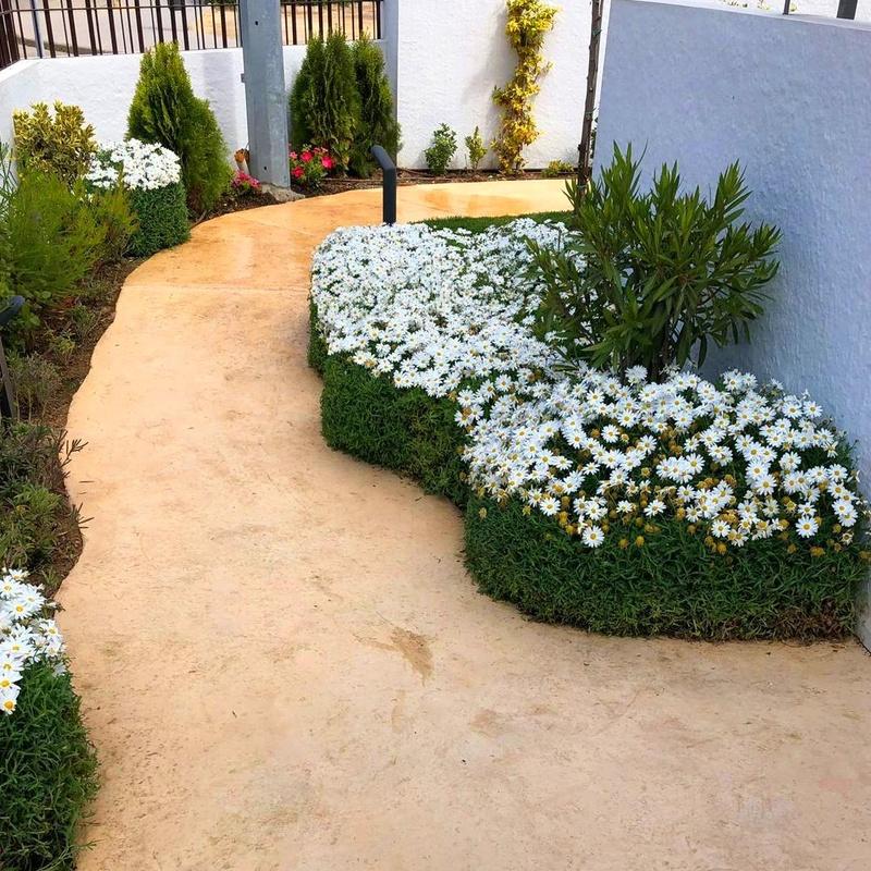 Mantenimiento de jardines decorativos