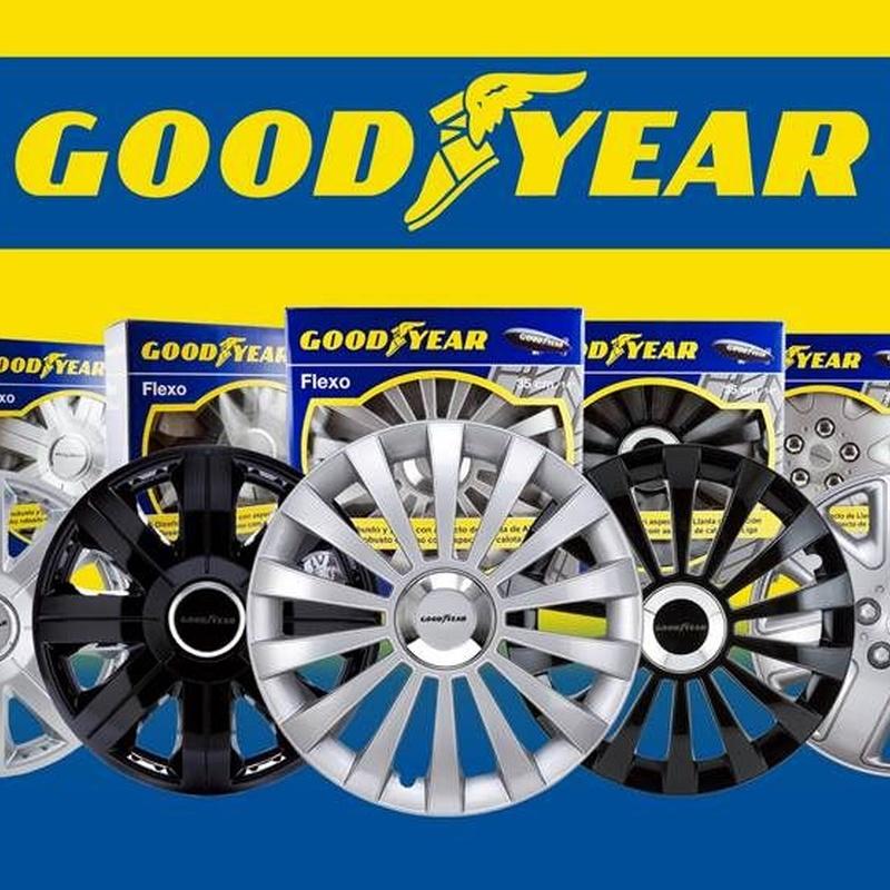Good Year: Productos de Recambios Morales