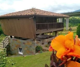 Canalón en Hórreo asturiano