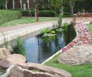 Todos los productos y servicios de Diseño y mantenimiento de jardines: Jardinería Setenil