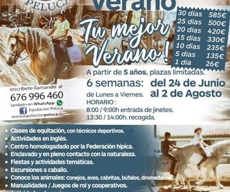 Carruajes: Servicios de Equitación Peluca