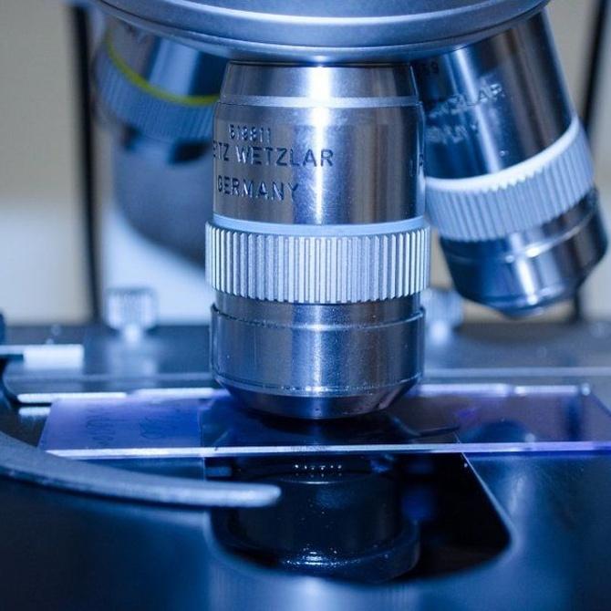 ¿Qué se puede detectar en un análisis de heces?