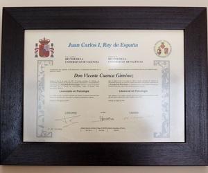 Licenciado en Psicología Vicente Cuenca