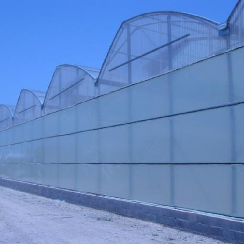 Invernaderos Asimétrico: Invernaderos de Invernaderos Campos
