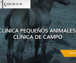 Clínica veterinaria en Cebreros | Centro Veterinario Iruelas