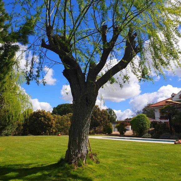 Retiros de relax: Ofrecemos de Casa Colibrí