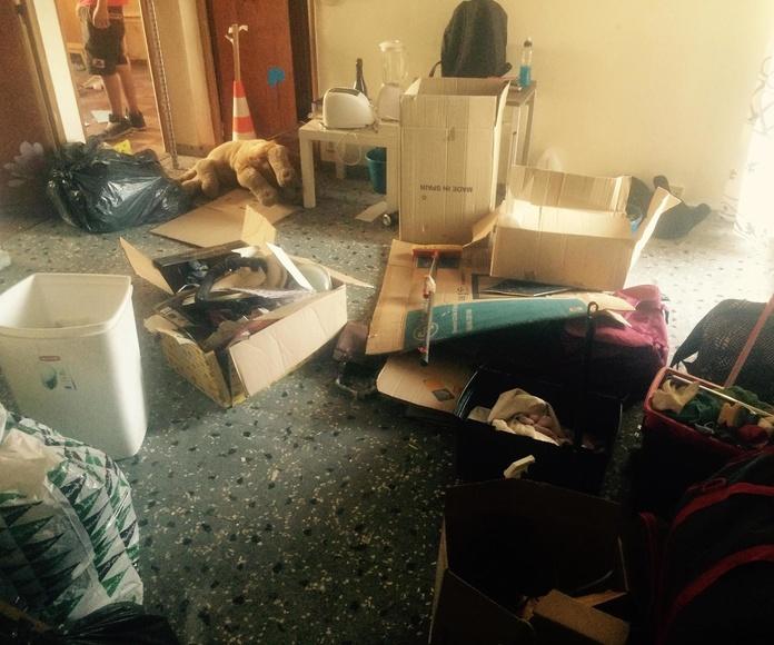 Limpieza Profunda en un solo día: Servicios de Primera Imagen
