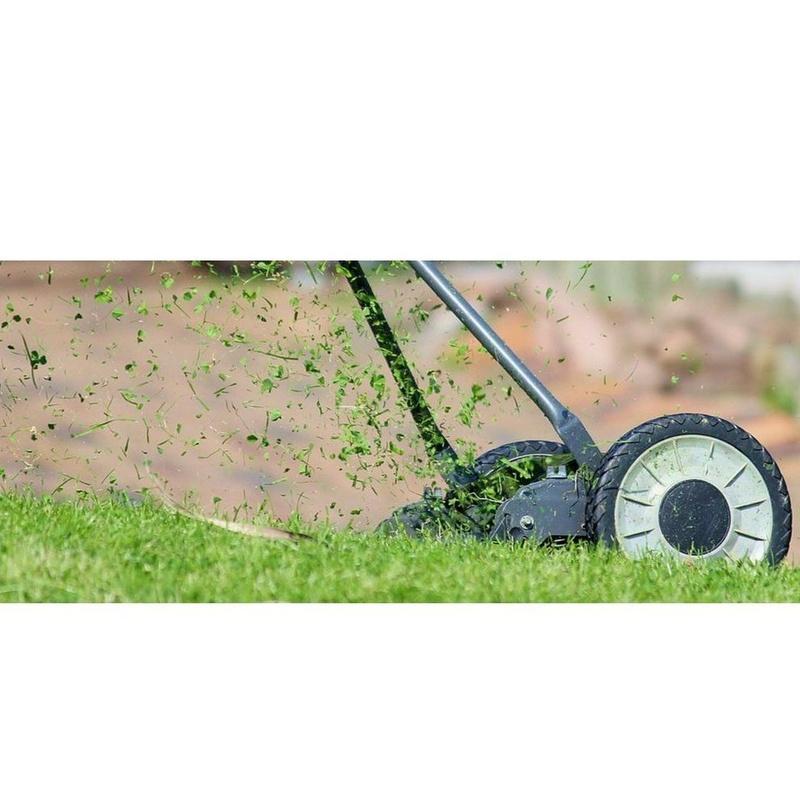 Mantenimiento de jardines : Servicios  de Limpieza Achaman